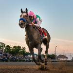 The Main Track: Arrogate's Impending Finale