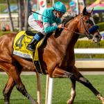 2020 Haskell Stakes Cheat Sheet