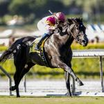 Avenge Has Advantage in Small But Competitive Gamely Stakes