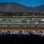 Four Reasons for Horse Racing Fans to Get Excited About Fall