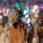 Breeders' Cup Classic Class of 2018: Where Are They Now?