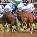 Where to Watch/Listen During 2020 Breeders' Cup Week