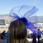 Five Reasons You Should Be at the 2019 Breeders' Cup