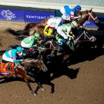 Ten Things You Might Not Know About the Breeders' Cup Juvenile