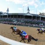 SLIDESHOW: Remembering a Spectacular Breeders' Cup Weekend