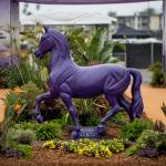 Where to Watch/Listen During Breeders' Cup 2017 Week