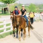 SLIDESHOW: A Spring Morning With Barbaro at Keeneland in 2006