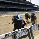 Best Bets: Holiday Plays at Belmont Park