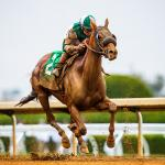 Getting to Know Longines Breeders' Cup Distaff Contender Blue Prize