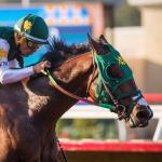 Breeders' Cup Juvenile Tip Sheet: Using History to Evaluate Bolt d'Oro's Chances
