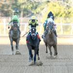 Caddo River Rolls to Smarty Jones Stakes Runaway