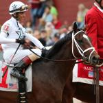 Kentucky Derby Futures: Trends to Watch for Feb. 24