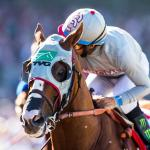 America's Best Thoroughbreds