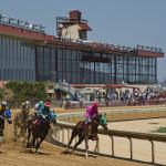 Dan's Double: Weekend Stakes at Charles Town
