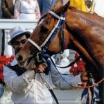 Secretariat a Source of Inspiration in Tumultuous Times