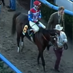 My Longshot: Cigar's Coming-Out Party at Aqueduct