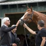 Justify Still Gleaming After Triple Crown Heroics