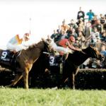 Breeders' Cup Fantastic Finishes: A Comeback of Biblical Proportions