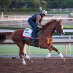 California Chrome Just One Part of Dihigi Gladney's Amazing Ride