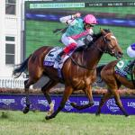 Enable Charges to Historic Victory, Roy H and Stormy Liberal Repeat in Breeders' Cup