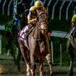 2020 Risen Star Stakes Cheat Sheet
