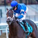 Derby Trail: Three Heating Up, Three Cooling Down for March 14