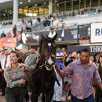 Five Takeaways from Fountain of Youth Stakes