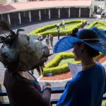 Know Before You Go: New Orleans and Fair Grounds Race Course