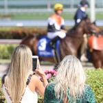 Ten Things to Know Before You Go: Florida Derby