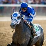 Getting to Know Frosted