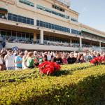 Everything You Need to Know About the Pegasus World Cup
