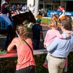 Florida Derby by the Numbers