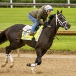 Hinton Has Upset Chance in Ohio Derby