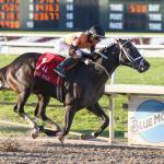 Louisiana Derby Cheat Sheet