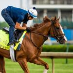 Preakness Field Grows Clearer: Good Magic In, Bolt d'Oro Out