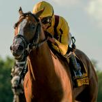 Can Good Magic Develop Into Serious Breeders' Cup Classic Threat?