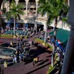 Evaluating Winning Trends in the Florida Derby