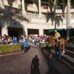 The Main Track: Florida Racing Community Battles Hurricane Irma