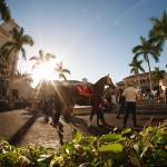 Pegasus World Cup to be Broadcast by NBC