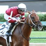Gun Runner Fit for Haskell Upset