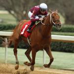 Gun Runner Headed for Pegasus Post-Breeders' Cup