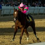 2019 Maryland Million Classic Cheat Sheet