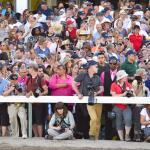 Stay Lucky Picks: Jersey Shore Spotlight for 2019 Haskell