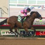 Promising Start for 2020 Kentucky Derby Hopeful High Velocity