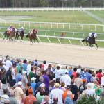 Kentucky Derby Futures: Four Risers You Need to Know on Crowded Trail