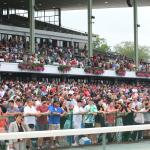 Handicapping the Haskell With History as a Guide