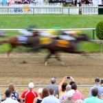 Tips for Betting Pimlico Races During Preakness Week
