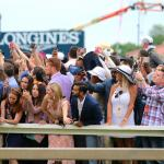 Stay Lucky Guide: Preakness Stakes Edition