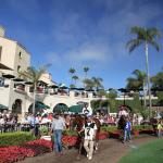 Keys to Handicapping Fall 2-Year-Old Races