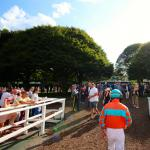 Where to Watch/Listen During Haskell Invitational Week 2019